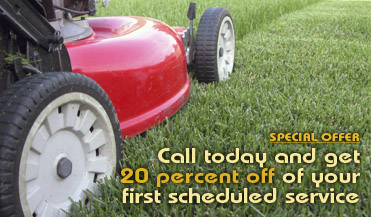 Lawn Care Offer